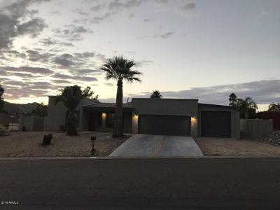 Fountain Hills Single Family Home For Sale: 14624 N Briarwood Drive