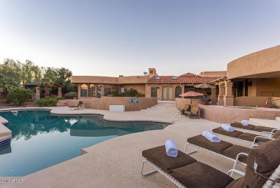Cave Creek Single Family Home For Sale: 5027 E Calle De Los Arboles