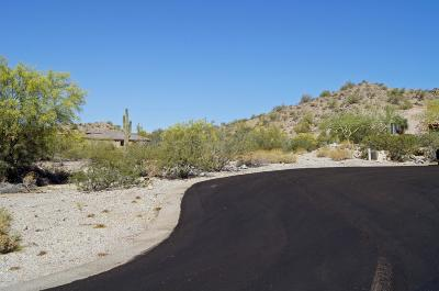 Goodyear Residential Lots & Land For Sale: 10738 S Casa Blanca Drive