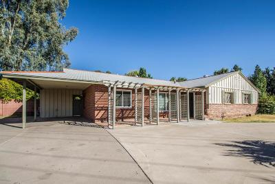Phoenix Single Family Home For Sale: 702 E Winter Drive
