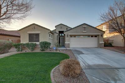 San Tan Valley Single Family Home For Sale: 751 E Mule Train Trail