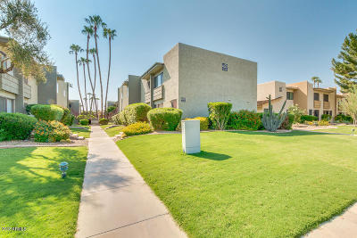 Scottsdale Condo/Townhouse For Sale: 4610 N 68 Street #476