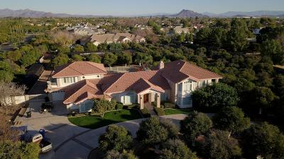 Mesa Single Family Home For Sale: 3710 E McLellan Road E