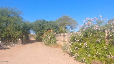 Phoenix Residential Lots & Land For Sale: 305 W Saddle Mountain Road