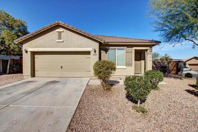 Maricopa Single Family Home For Sale: 42400 W Arvada Lane