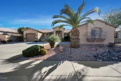 Chandler Single Family Home For Sale: 2063 E Firestone Drive