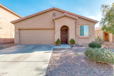 Maricopa Single Family Home For Sale: 19133 N Ventana Lane
