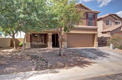 Maricopa Single Family Home For Sale: 44005 W Wade Drive