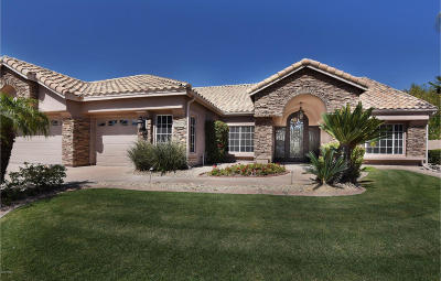 Phoenix Single Family Home For Sale: 2560 E Desert Willow Drive