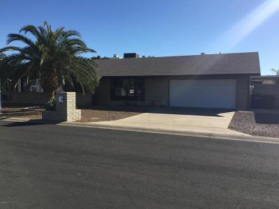 Mesa Single Family Home For Sale: 6115 E Hillview Street