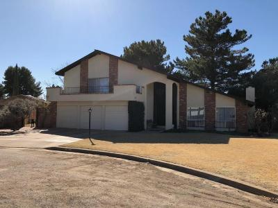 Douglas Single Family Home For Sale: 2801 Barcelona Drive