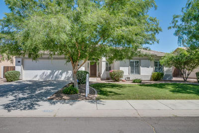 Queen Creek Single Family Home For Sale: 20338 E Bronco Drive