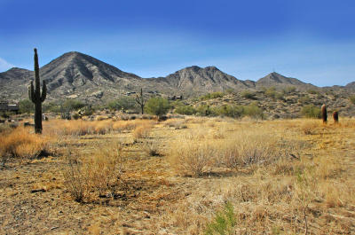 Fountain Hills Residential Lots & Land For Sale: 14352 E Desert Tortoise Trail