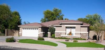 Gilbert AZ Single Family Home For Sale: $446,000