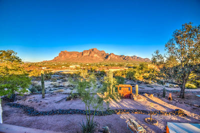 Apache Junction Single Family Home For Sale: 1491 N Boyd Road