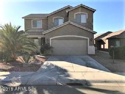 Maricopa Single Family Home For Sale: 45605 W Sky Lane