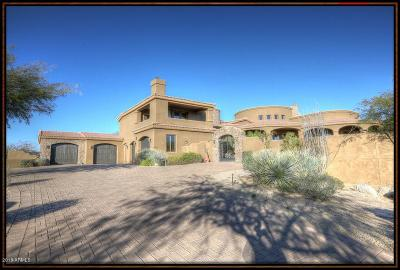 Scottsdale Single Family Home For Sale: 11650 E Four Peaks Road
