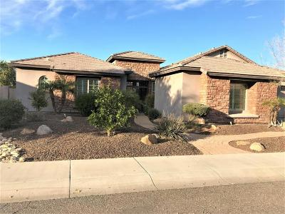 Phoenix Single Family Home For Sale: 5832 W Fetlock Trail