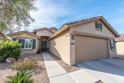 Casa Grande Single Family Home For Sale: 2561 E Santa Maria Drive