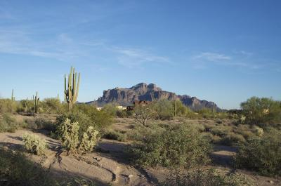 Apache Junction Residential Lots & Land For Sale: 953 E Frontier Street