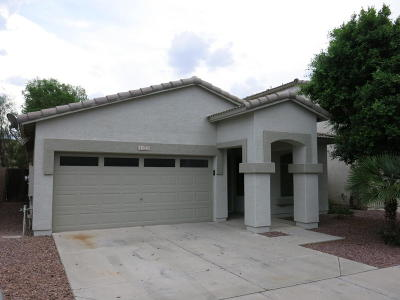 Mesa Single Family Home For Sale: 1123 S Amandes Avenue