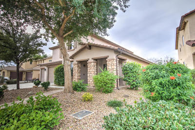 San Tan Valley Single Family Home For Sale: 41356 N Eliana Drive