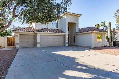 Scottsdale Single Family Home For Sale: 5247 E Anderson Drive