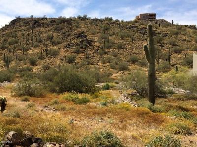 Phoenix Residential Lots & Land For Sale: 3101 W Joy Ranch Road