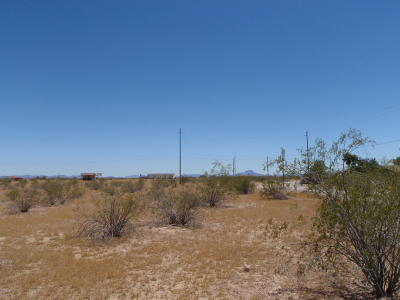 Maricopa County Residential Lots & Land For Sale: 312x N 337th Avenue