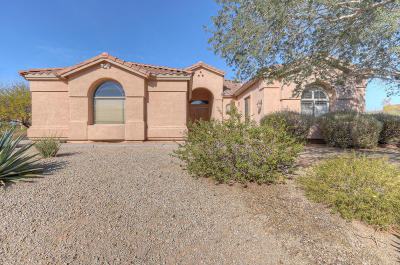 Cave Creek Single Family Home For Sale: 6125 E Almeda Court