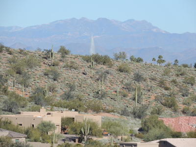 Maricopa County Residential Lots & Land For Sale: 16231 E Powderhorn Drive