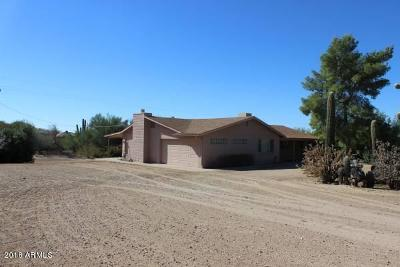 Cave Creek Single Family Home For Sale: 6711 E Carefree Highway E