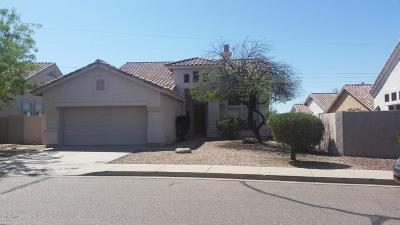 Cave Creek Single Family Home For Sale: 31038 N 42nd Place