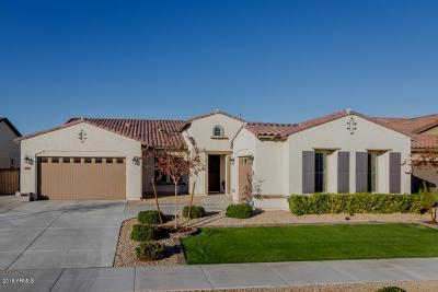Queen Creek Single Family Home For Sale: 19916 E Apricot Lane