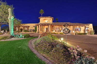 Cave Creek Single Family Home For Sale: 9716 E Mariposa Grande Drive