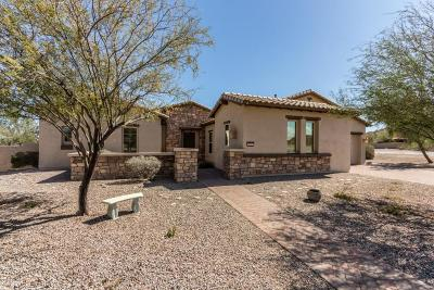 Goodyear Single Family Home For Sale: 11015 S Blossom Drive
