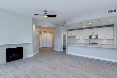 Tempe Apartment For Sale: 945 E Playa Del Norte Drive #2017