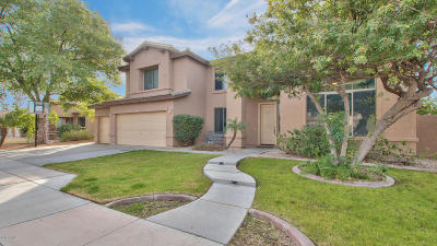 Mesa Single Family Home For Sale: 9903 E Meseto Avenue