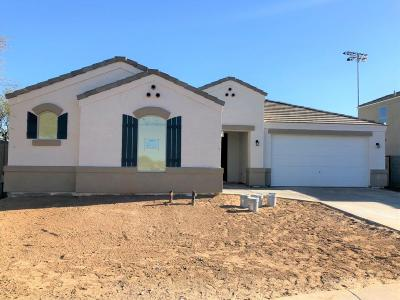San Tan Valley Single Family Home For Sale: 35773 N Loemann Drive Drive