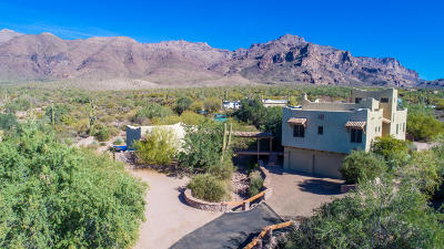 Gold Canyon Single Family Home For Sale: 9808 E Saguaro Summit Court