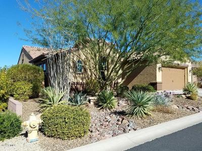 Cave Creek Single Family Home For Sale: 5720 E Calle Marita