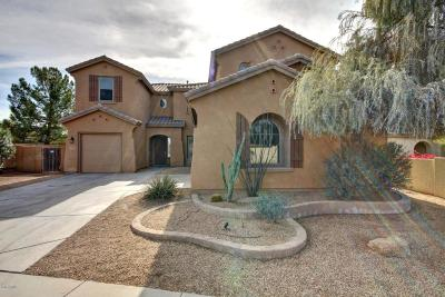 Chandler Single Family Home For Sale: 3993 E Virgo Place