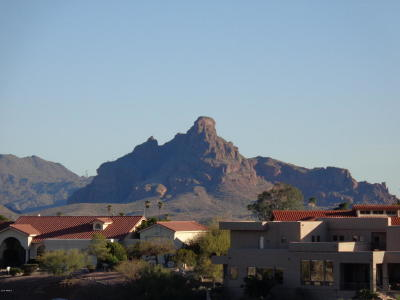 Fountain Hills Residential Lots & Land For Sale: 15623 E Sunburst Drive