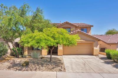 Scottsdale Single Family Home For Sale: 10297 E Star Of The Desert Drive
