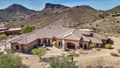 Fountain Hills Single Family Home For Sale: 10624 N Arista Lane
