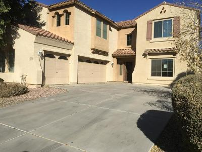 Surprise Single Family Home For Sale: 17740 W Crocus Drive