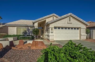 Goodyear Single Family Home For Sale: 14778 W Merrell Street