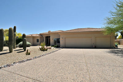Rio Verde Single Family Home For Sale: 18419 E Agua Verde Drive E