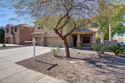 San Tan Valley Single Family Home For Sale: 41702 N Rabbit Brush Trail