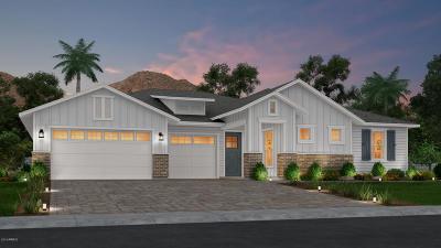 Phoenix Single Family Home For Sale: 3833 E Hazelwood Street